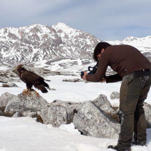Documentari naturalistici dei nostri rapaci